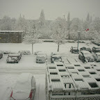 Snowfall 2010