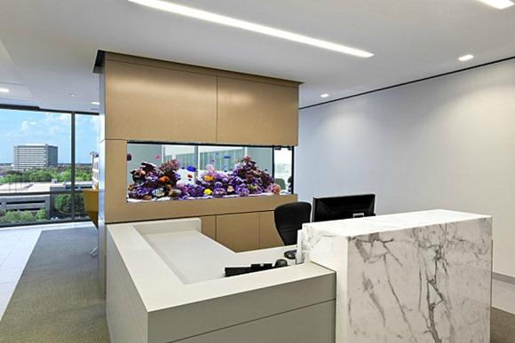 Modelos de oficinas con peceras