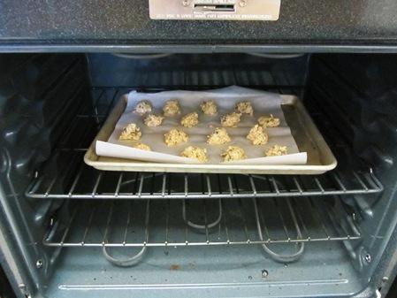 oatmeal cookies 024