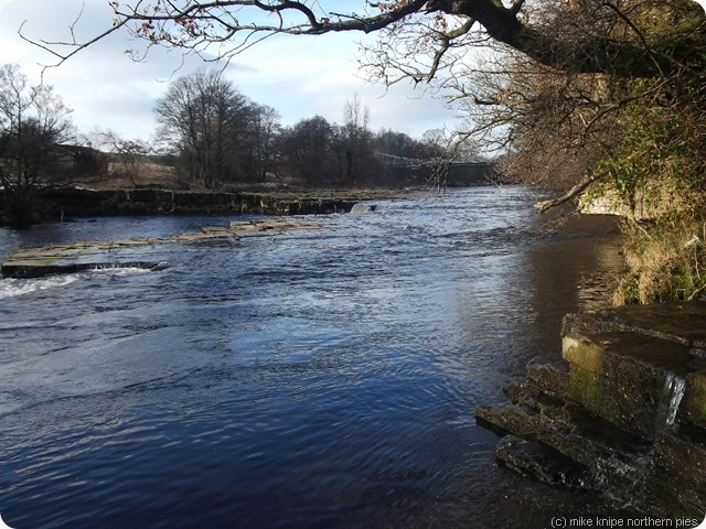 river tees near whorlton