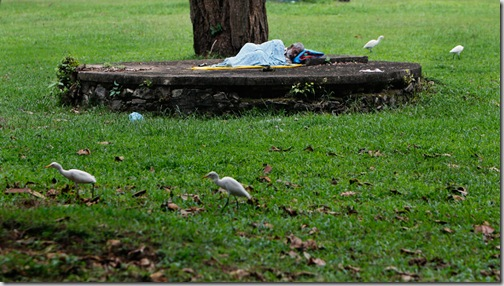 APTOPIX Sri Lanka Daily Life