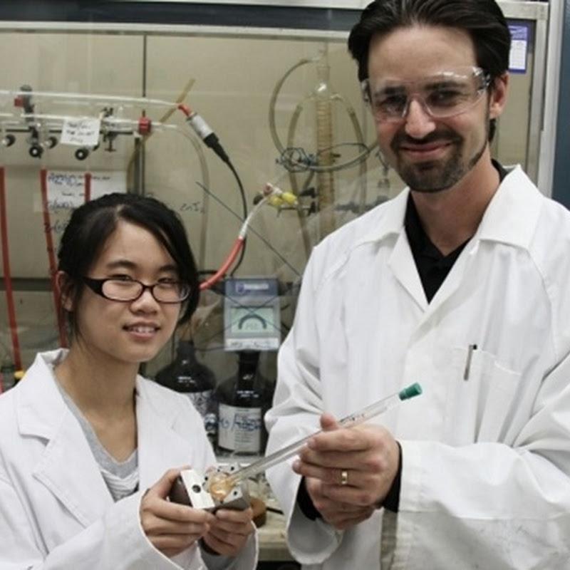 Crean la esponja solar que absorbe CO2
