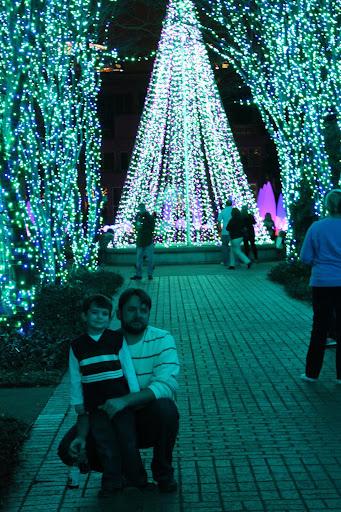 Garden Lights Holiday Nights At Atlanta Botanical Garden Jolly Mom