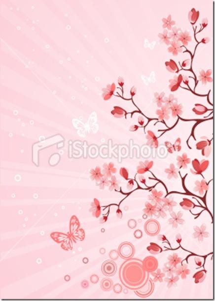 istockphoto_12044283-japanese-cherry-blossom