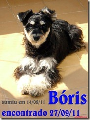 boris_encontrado