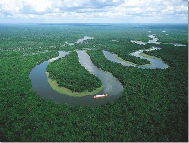 beautiful-amazon-rain-forest-17