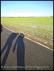 Passeggiata a Padulle - 29 gennaio 2014 (19)