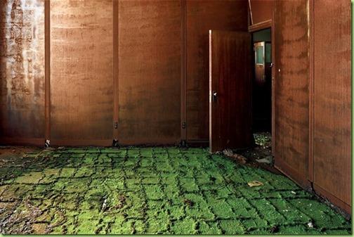 detroit floor