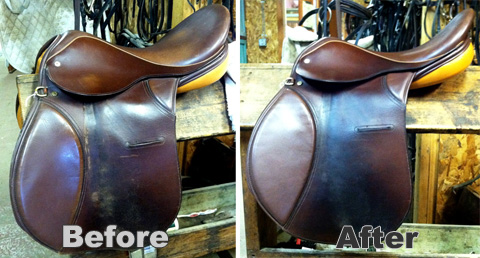 Saddlebeforeafter