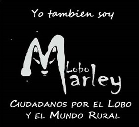 lobo-marley