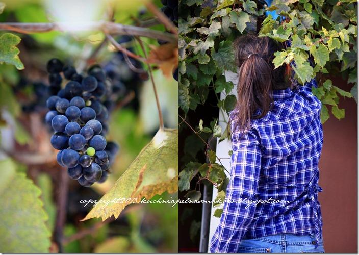 Lody winogronowe2