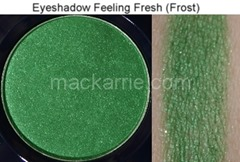 c_FeelingFreshFrostEyeshadowMAC2