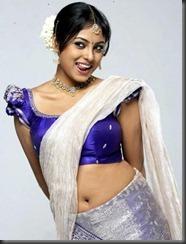 meenakshi _in saree