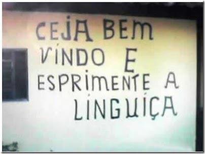 praca linguica