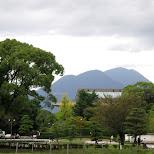 mt. fuji viewed from shizuoka in Shizuoka, Sizuoka (Shizuoka) , Japan