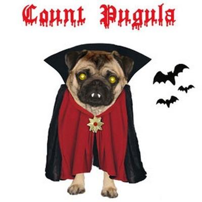 perros vampiro 1 (5)