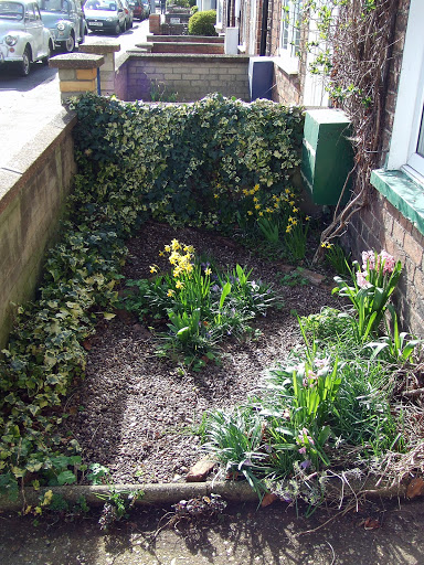 Front garden from the North, March 2008