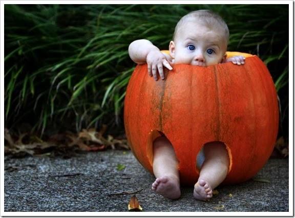 bebê abóbora
