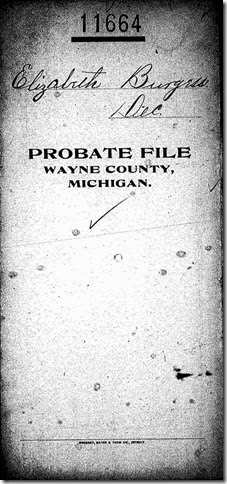 BURGESS_Elizabeth_Probate and will_1884-1885_Detroit_Wayne_Michigan_Page_01_cropped