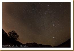 Orionoid Meteor