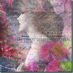 Carnations Fine Art Print