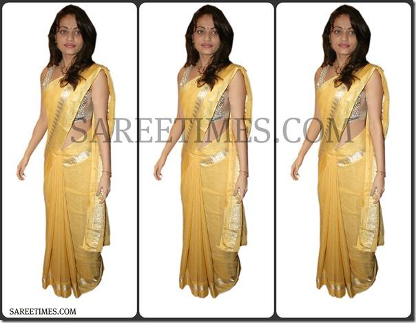 Sneha_Ullal_Designer_Saree
