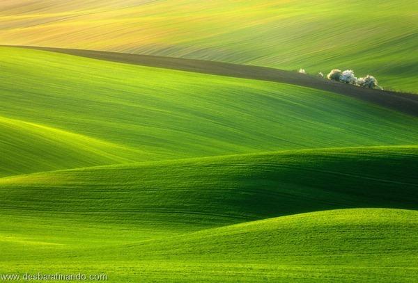 landscapes-paisagens-desbaratinando (39)