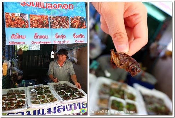 things-to-do-in-chiang-mai-go-to-doi-suthep-temple-eat-insect