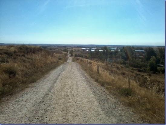 caminho de santiago cel 208