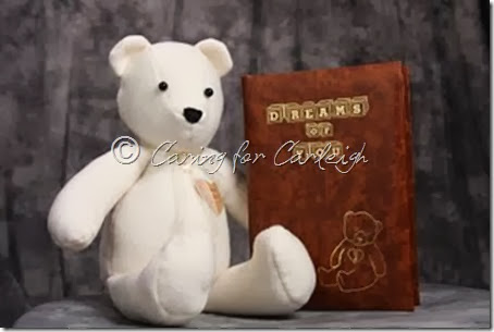 comfort bear and book