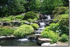 nybg-new-york-botanic-gardens-bronx