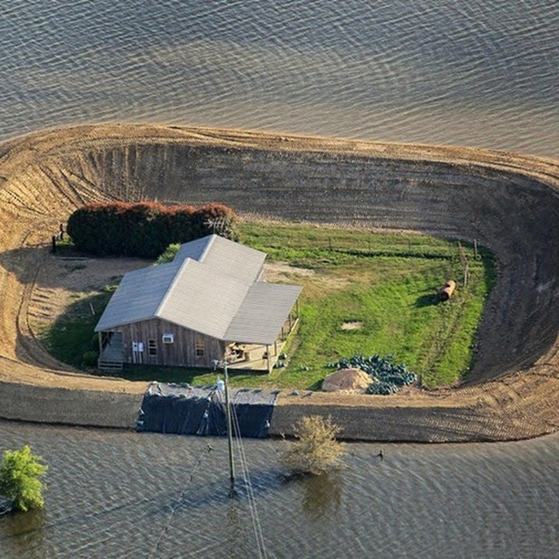 Island Homes During Mississippi River Flooding