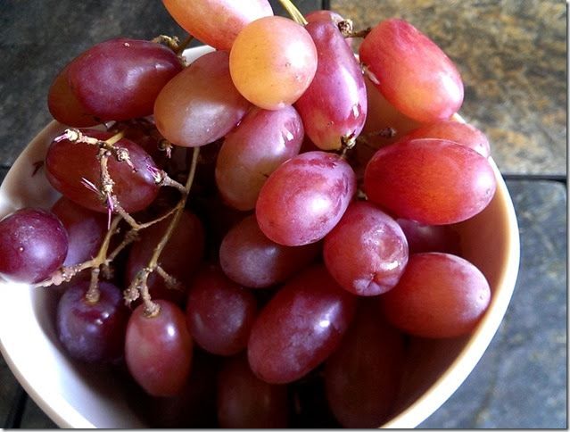 grapes-public-domain-pictures-1 (2244)