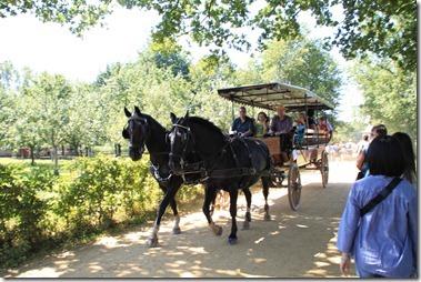 観光客を載せた馬車
