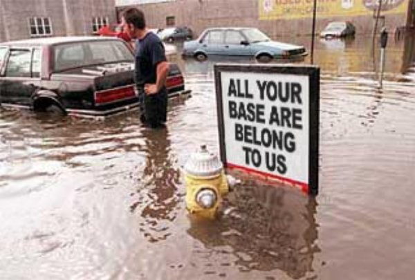 "Flooded area with cars and sign reading ""All your base are belong to us"""