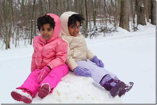 Snow 331