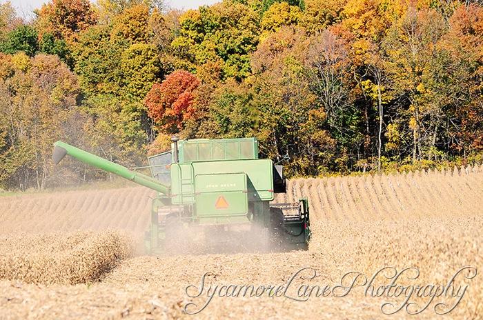 harvest-4-w