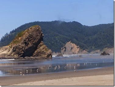 12 - Oregon016