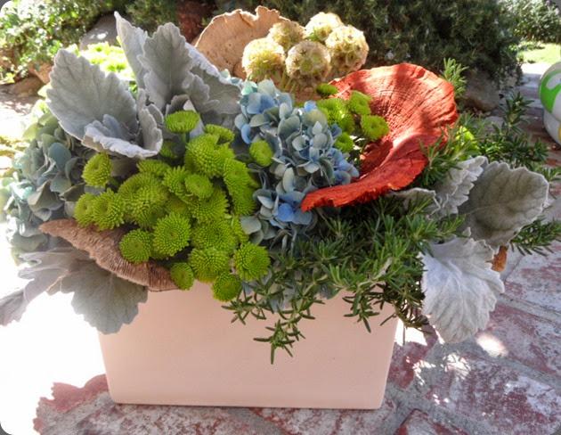 mums SAM_0750 fantasy floral