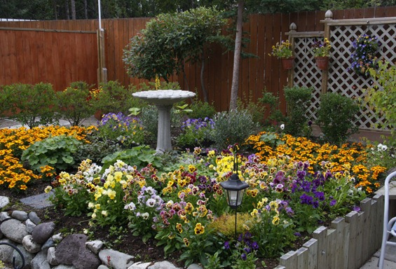 bird-bath-garden2