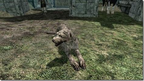 skyrim companions 18 dogs 01