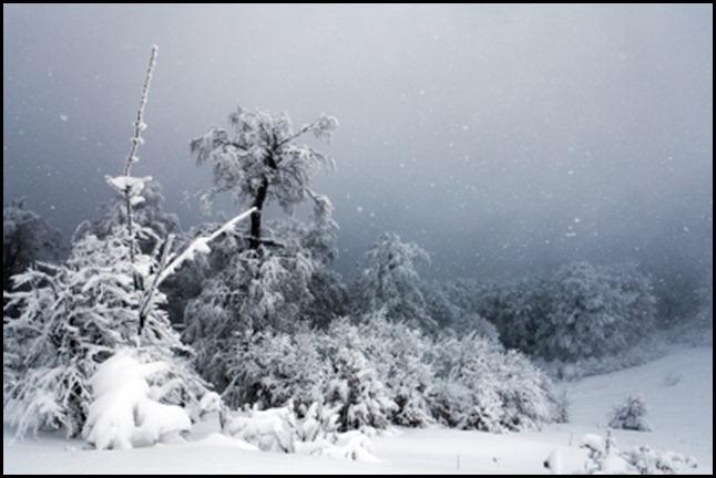 blizzard 2-9-13