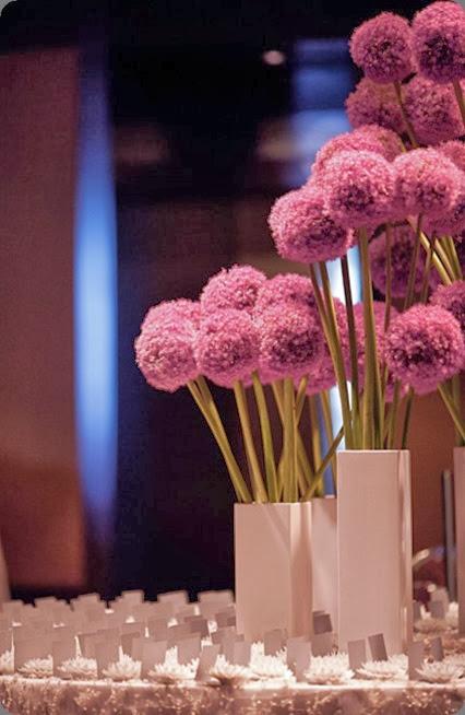 allium wed_lx4_expanded belle fleur