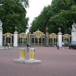 in front of buckingham palace - where is the queen? in London, London City of, United Kingdom