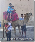 Raki's Rad Resources - Journey to Morocco - Riding a Camel