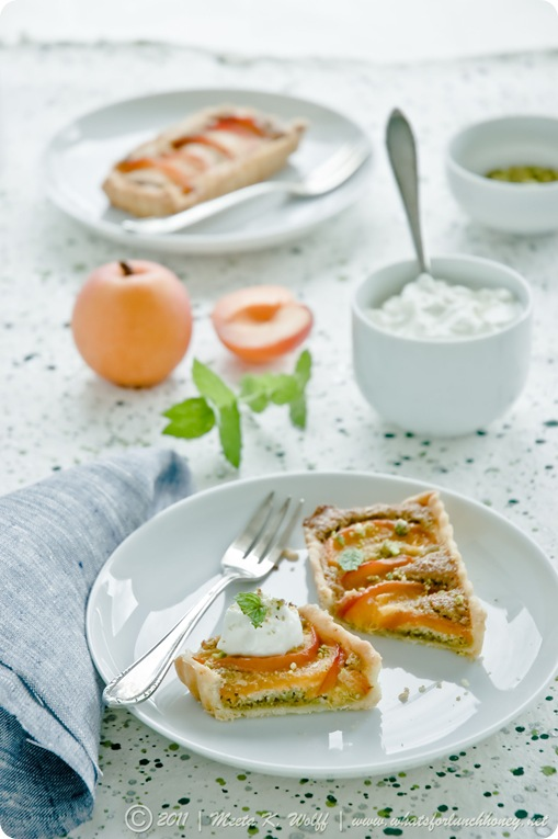 Apricot and Pistachio Frangipane Tart (0057) by Meeta K. Wolff