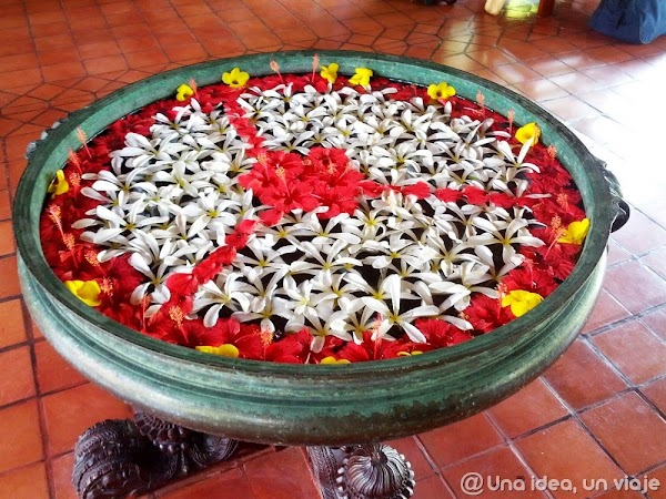 India-Kerala-fotos-con-colores-13.jpg