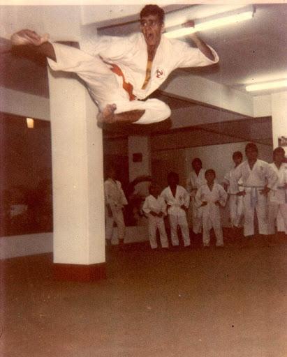 Apologise, but, Ashi te karate do pepe