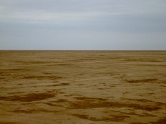 A whole lot of nothing in the Sechura Desert in Northern Peru.