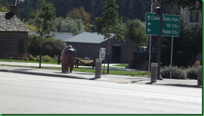 Driving the Custer Loop 018